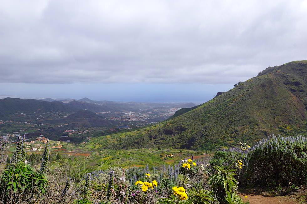 Roque Grande Wanderung - Tal- & Meerblick - Valsequillo - Gran Canaria