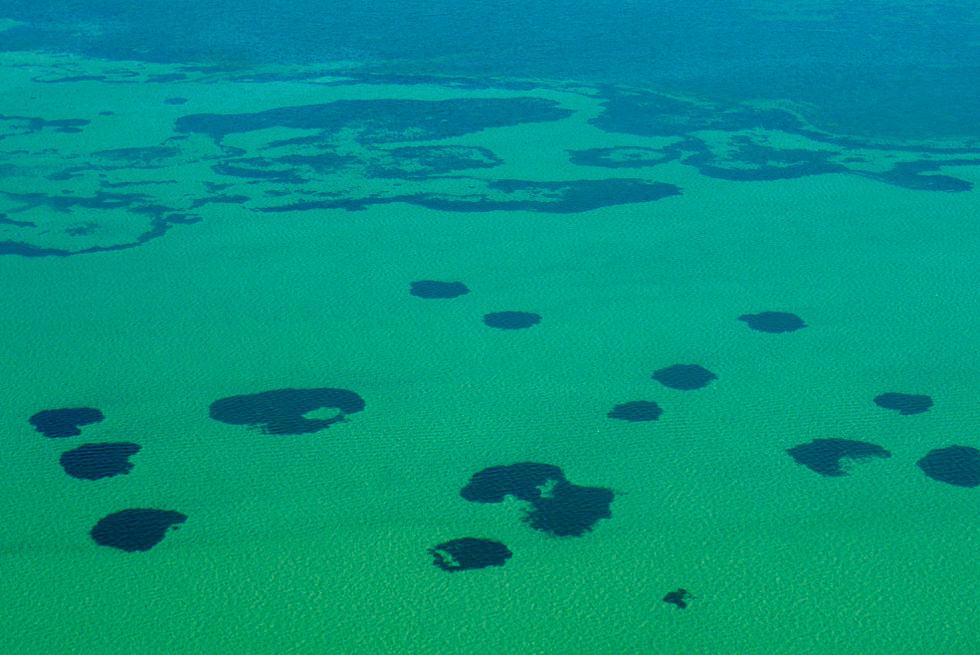 Shark Bay Scenic Flight - Blick auf das kristallklare Wasser der Shark Bay - Western Australia