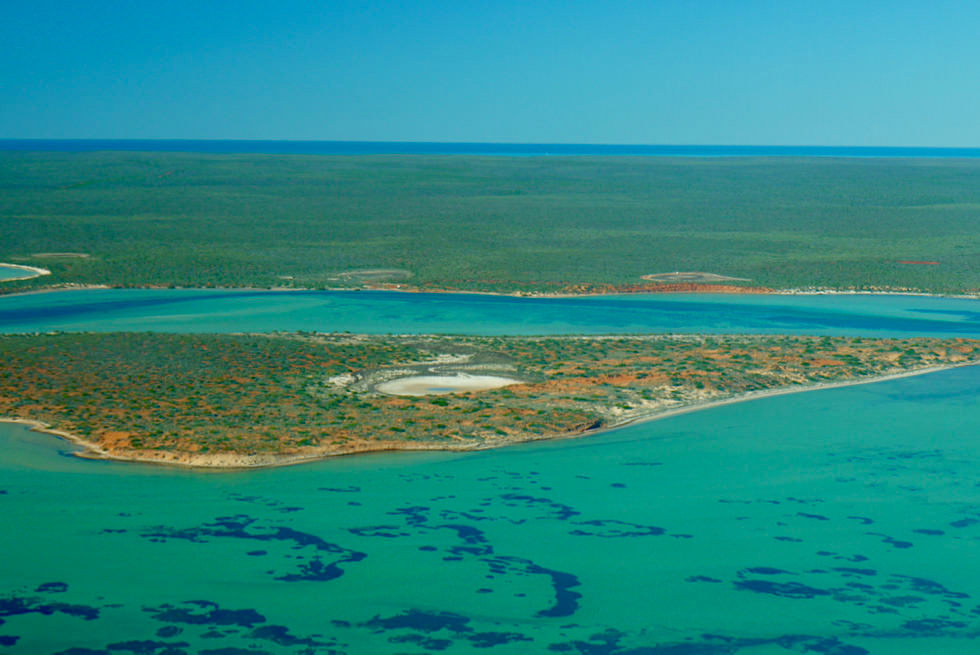 Shark Bay Scenic Flight - Einfach paradiesisch: Big Lagoon - Francois Peron National Park & Shark Bay Highlights - Western Australia