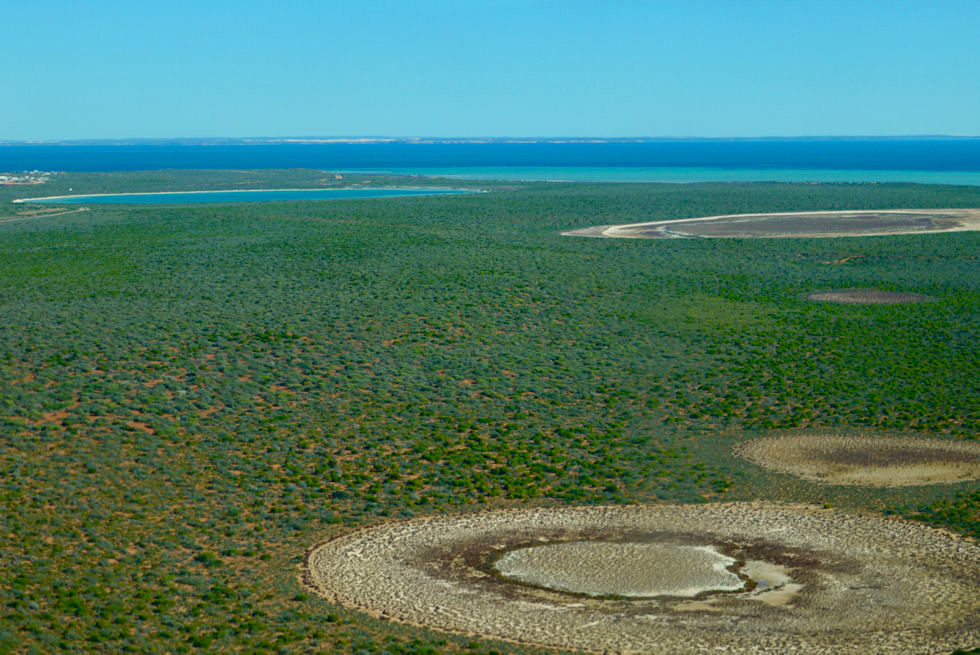 Shark Bay Scenic Flight - Birridas: landumschlossene Salzseen - Peron Peninsula & Shark Bay Highlights - Western Australia