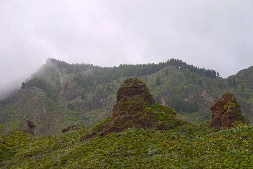 Wanderung Route 8 - Valsequillo - Gran Canaria