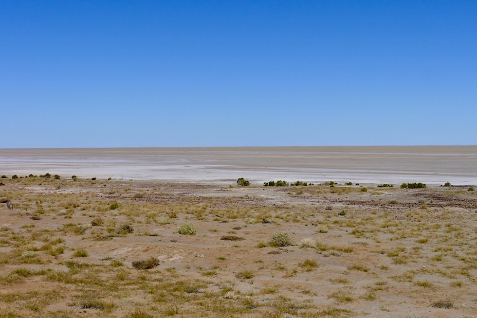 Ausblick auf Lake Eyre North - Halligan Bay - South Australia