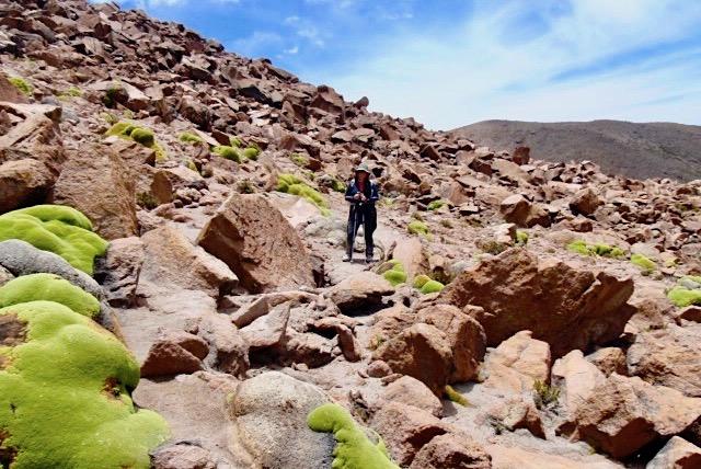 Chachani Besteigung - Abstieg, die letzten Meter - Arequipa - Peru
