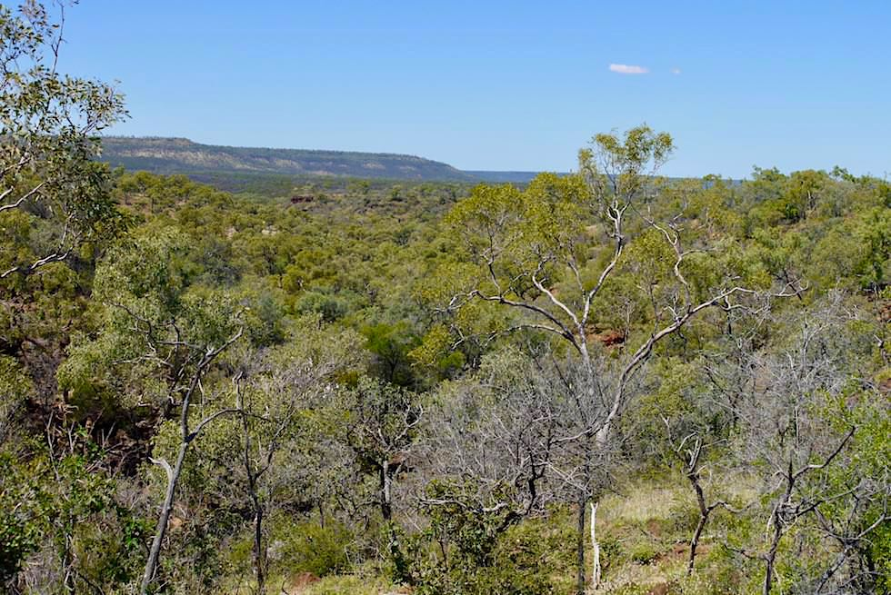 Ausblick vom Eagle Hawk Gorge Lookout - Porcupine Gorge National Park - Outback Queensland
