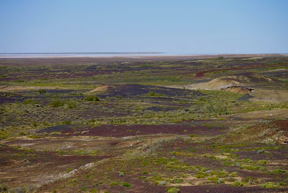 Schwarz-braune Landschaft - Halligan Bay Track - Lake Eyre North - South Australia