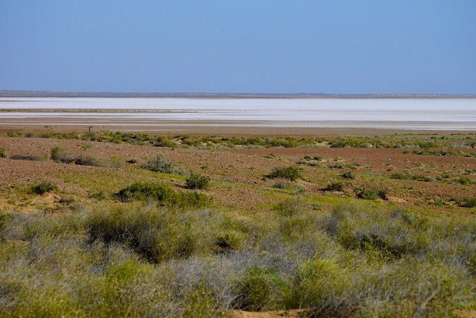 Wunderschöner Lake Eyre South - Lookout am Oodnadatta Track - South Australia