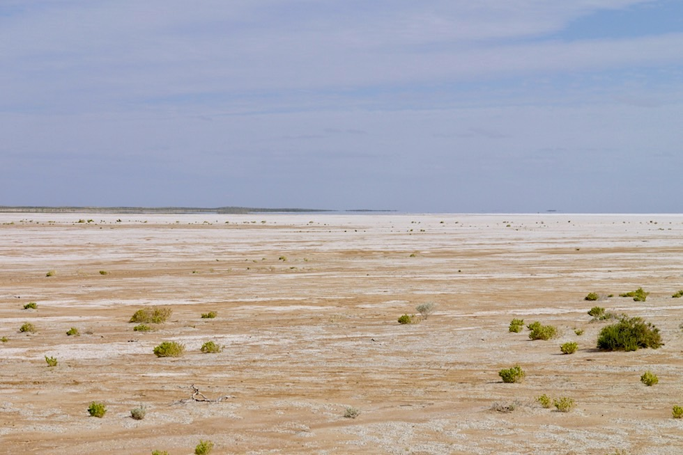 Lake Eyre South - Uferbereich - South Australia