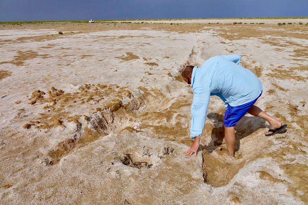 Lake Eyre - eingesunken: Abenteuerlust oder Buddelfrust? - South Australia