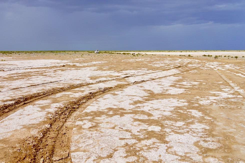 Lake Eyre - Wachgeküsst! Suche nach Wasser - South Australia