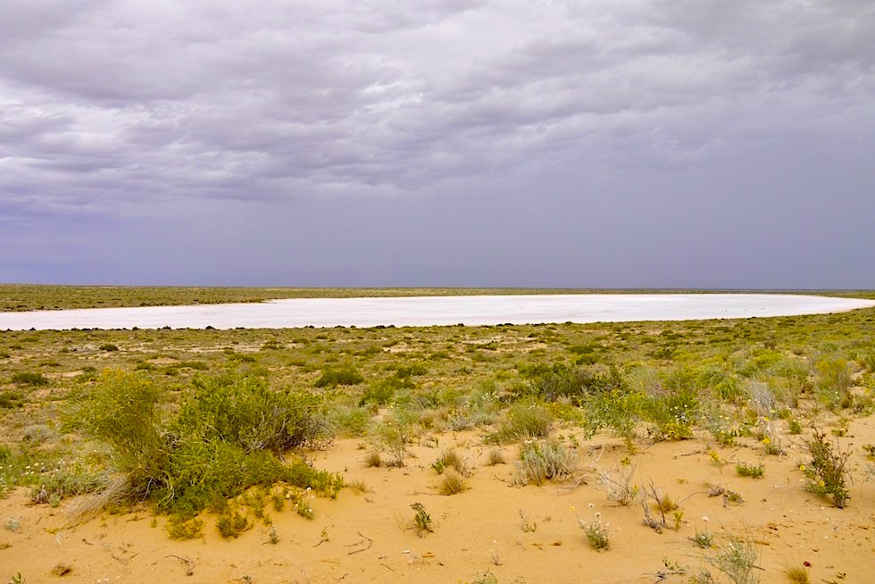 Nordost-Ufer Lake Eyre South - Nahe Level Post Bay - South Australia