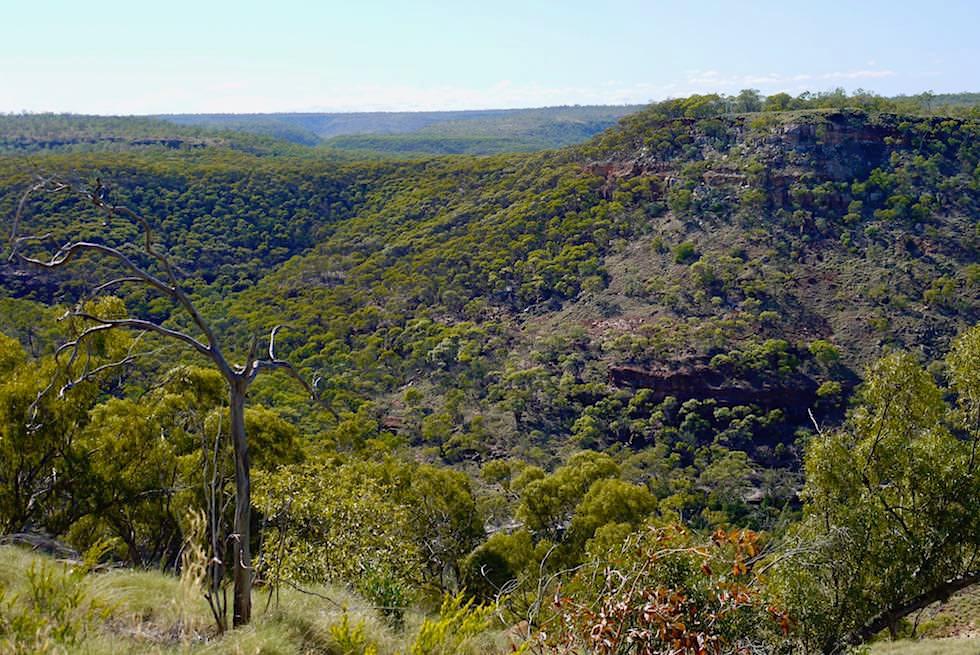 Porcupine Gorge - Ausblick vom Plateau - Outback Queensland