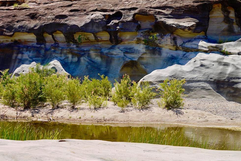 Porcupine Gorge National Park - bizarre erodierte Sandsteinklippen & Wasserlauf - Outback Queensland