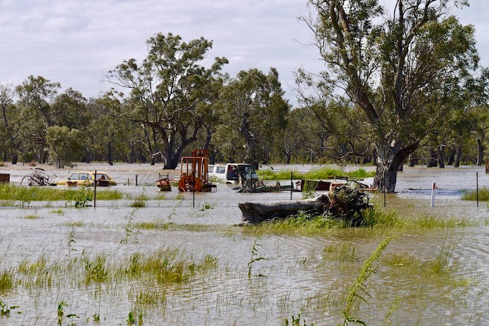 Dauerregen & Überschwemmung - New South Wales