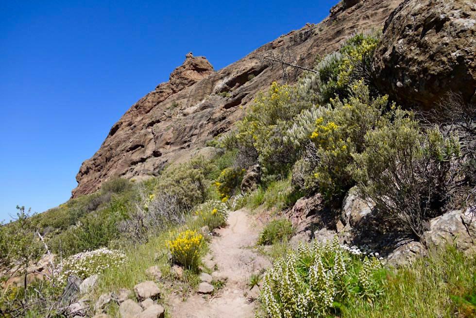 Roque Nubio Wanderung vom Lomo del Aserrador ausgehend - Gran Ganaria