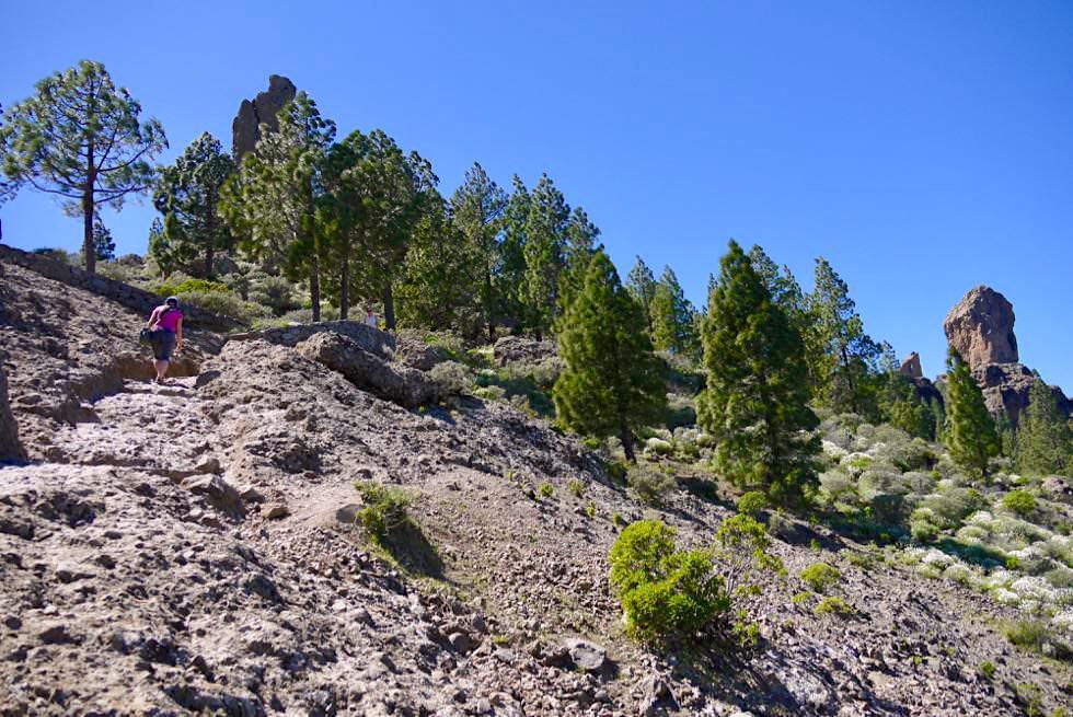 Roque Nublo Wanderung von La Goleta ausgehend - Gran Canaria