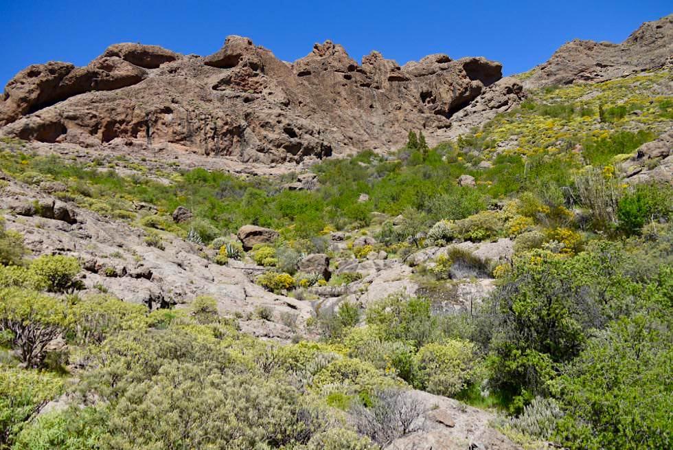 Roque Nublo Wanderung entlang den Ausläufern des Lomo del Aserrador - Gran Canaria