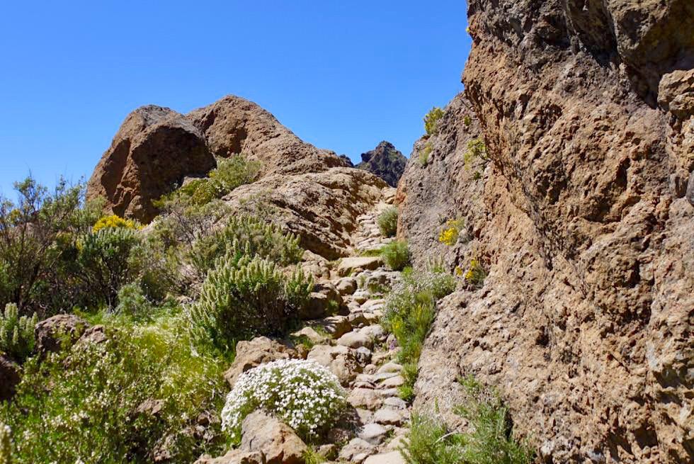 Roque Nublo Wanderung - Schöner Wanderweg nach Aserrador - Gran Canaria