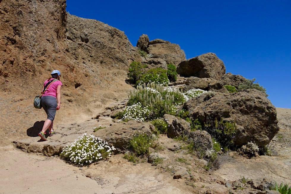 Roque Nublo Wanderung - Unterhalb des Gipfels - Gran Canaria