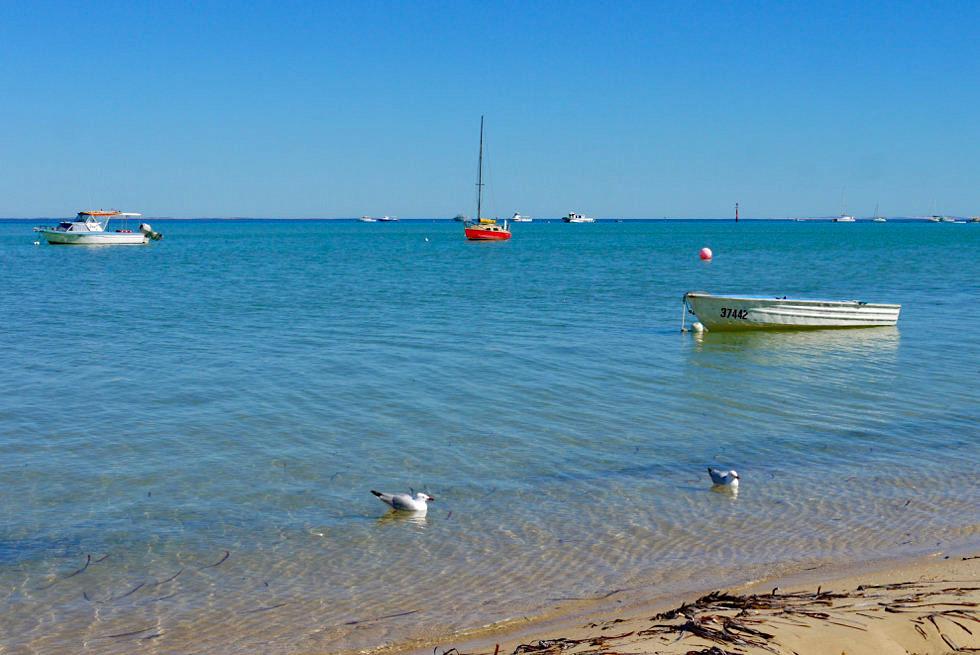 Shark Bay - Denham & seine Hafenmeile - Western Australia
