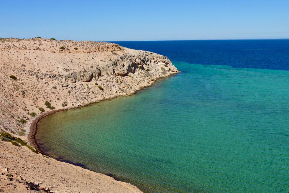 Shark Bay - Eagle Bluff: Ausblick auf die Bucht - Western Australia