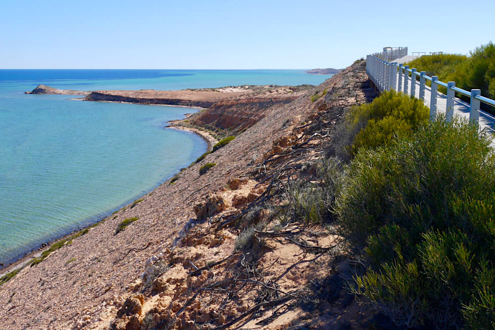 Shark Bay - Schönster Lookout: Eagle Bluff Walkway - Western Australia