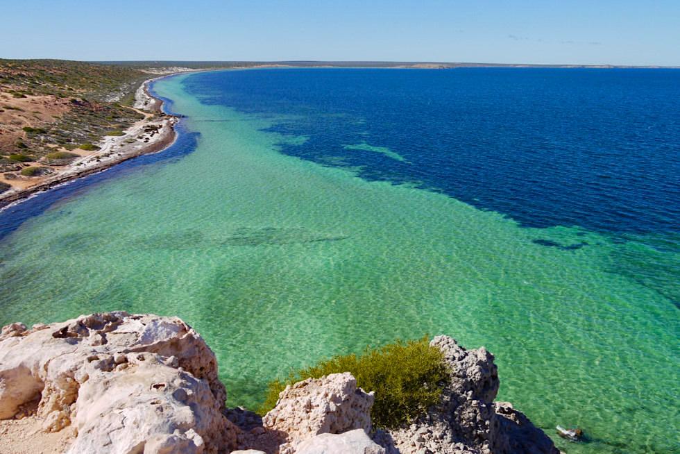 Schönste Lookout der Shark Bay: Eagle Bluff - Blick auf Südküste - Western Australia