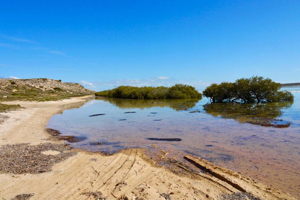 Shark Bay - Fowler's Camp - Western Australia