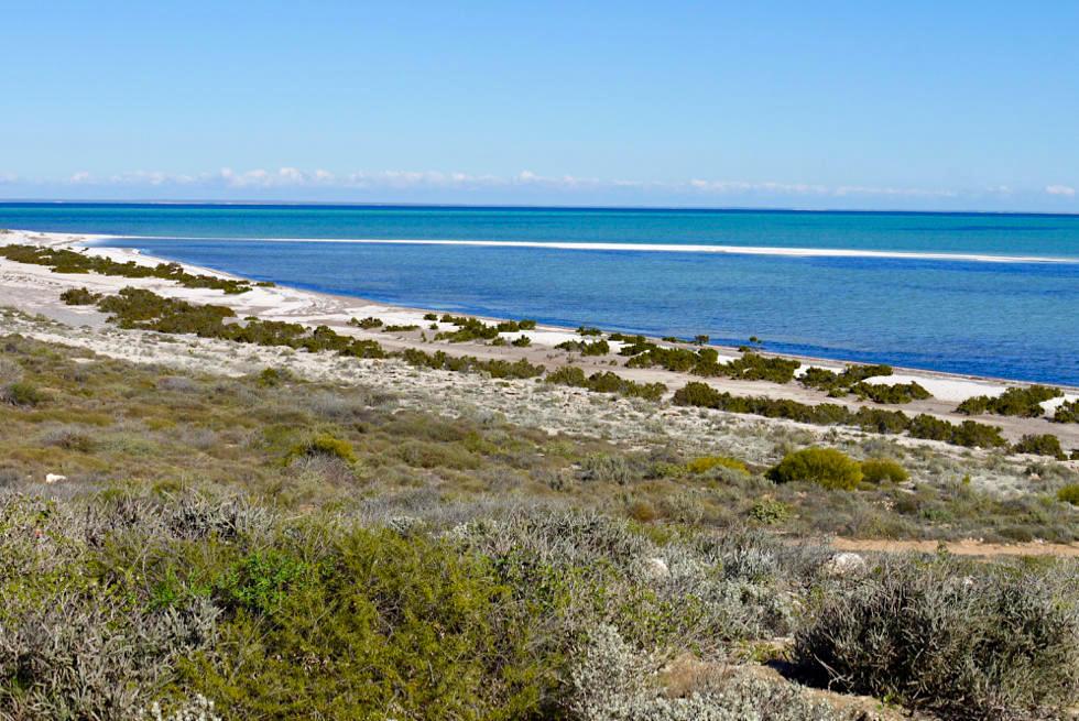 Shark Bay - Gulet Bluff: Ausblick auf den Shark Bay Marine Park - Western Australia
