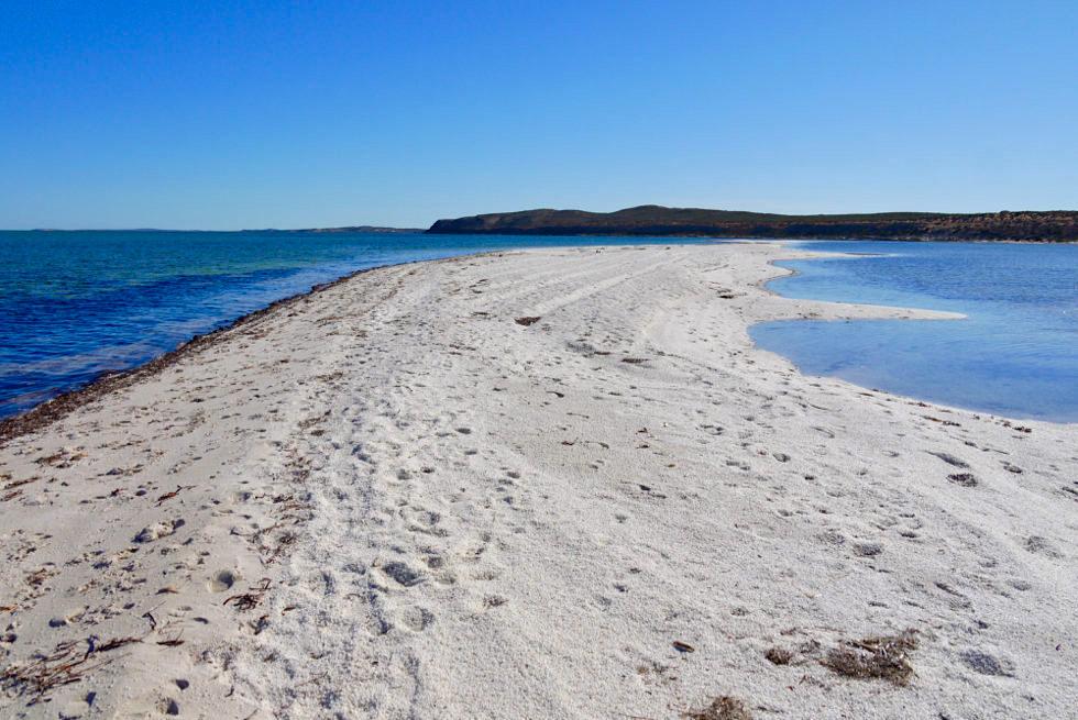 Shark Bay - Gulet Bluff & Lagune - Western Australia