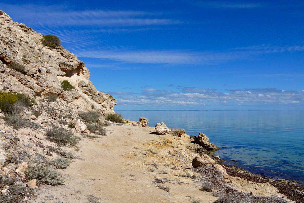 Shark Bay Highlights - Whalebone Bay & ein großartiger Ausblick - Western Australia