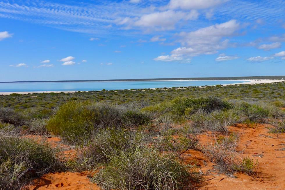 Shark Bay Higlights - Blick auf den wunderschönen Shell Beach - Western Australia
