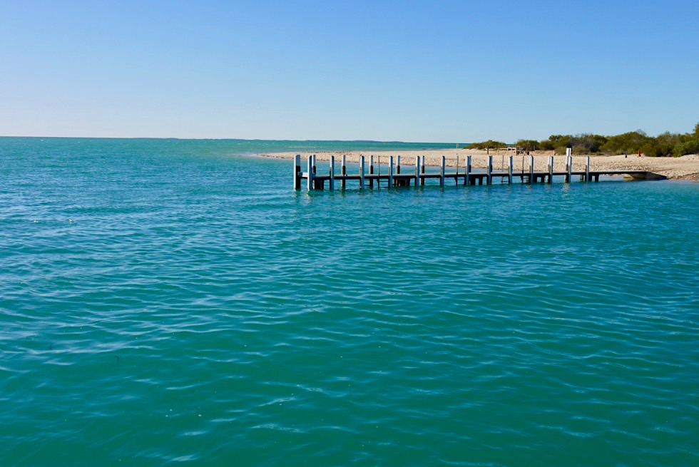 Shark Bay Highlights - Monkey Mia - Denham - Western Australia