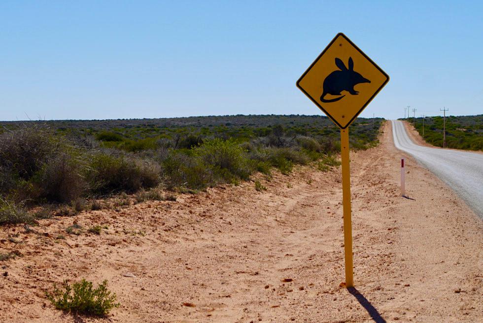 Shark Bay Road bei Denham - Western Australia
