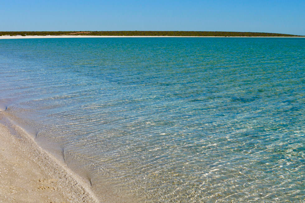 Shark Bay - Shell Beach & Muschelstrand laden zum Baden ein - Western Australien