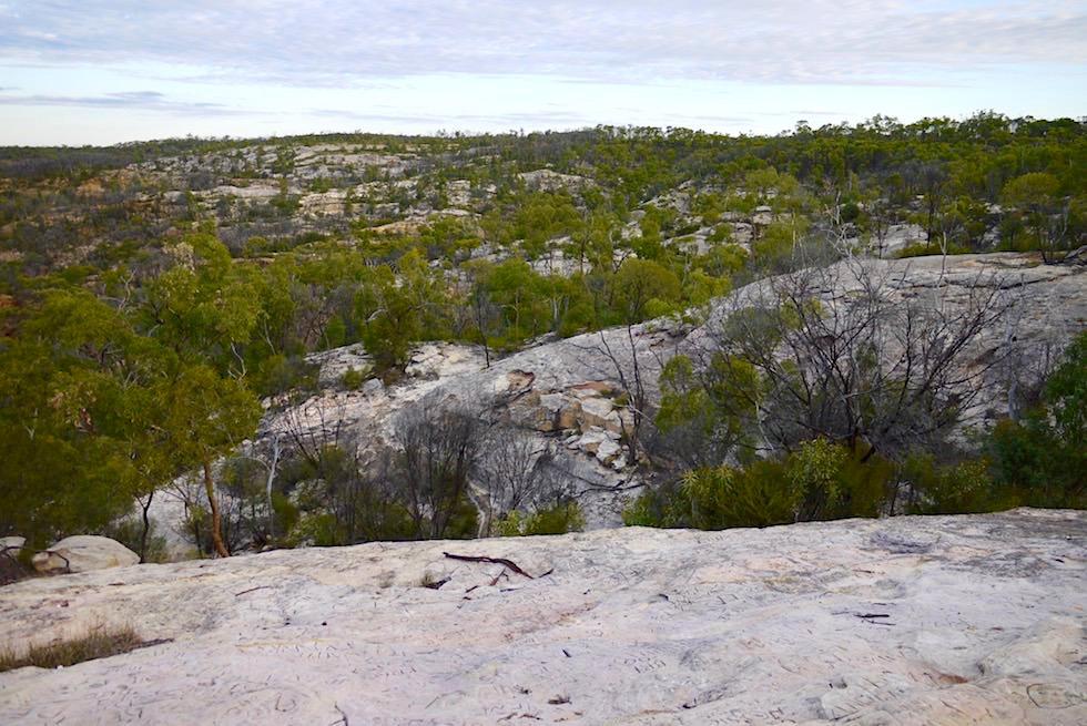 White Mountains National Park in der Nähe von Hughenden - Park mit den meisten Pflanzenarten in Queensland