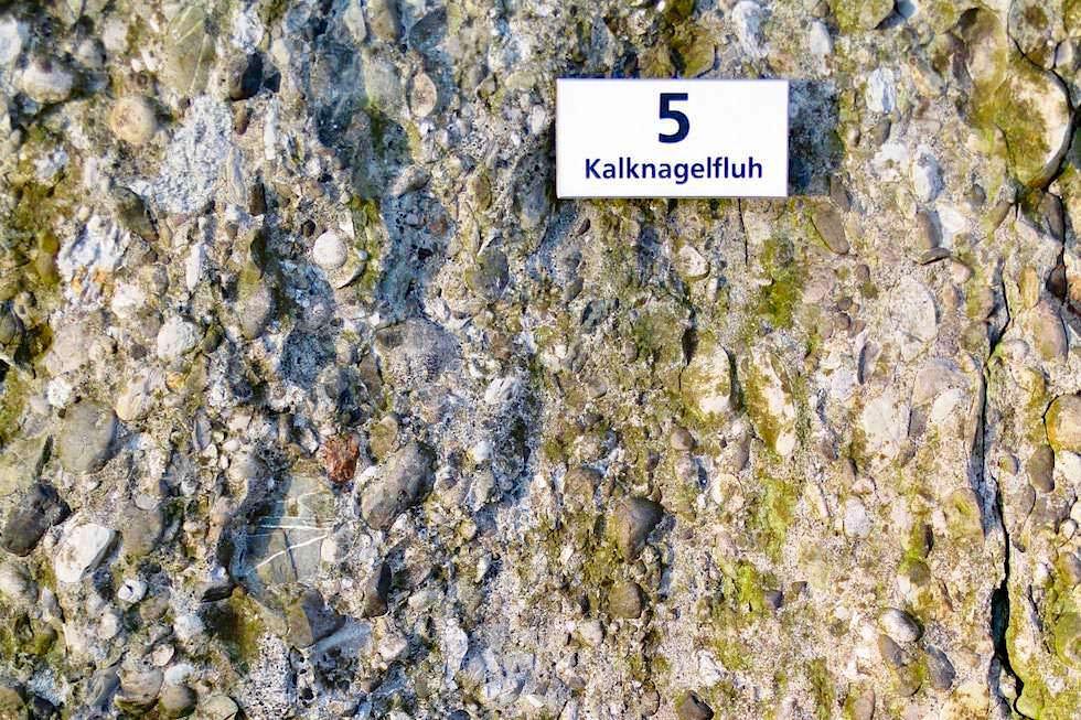 Alpseehaus - Nagelfluh Gestein - Großer Alpsee bei Immenstadt - Bayern