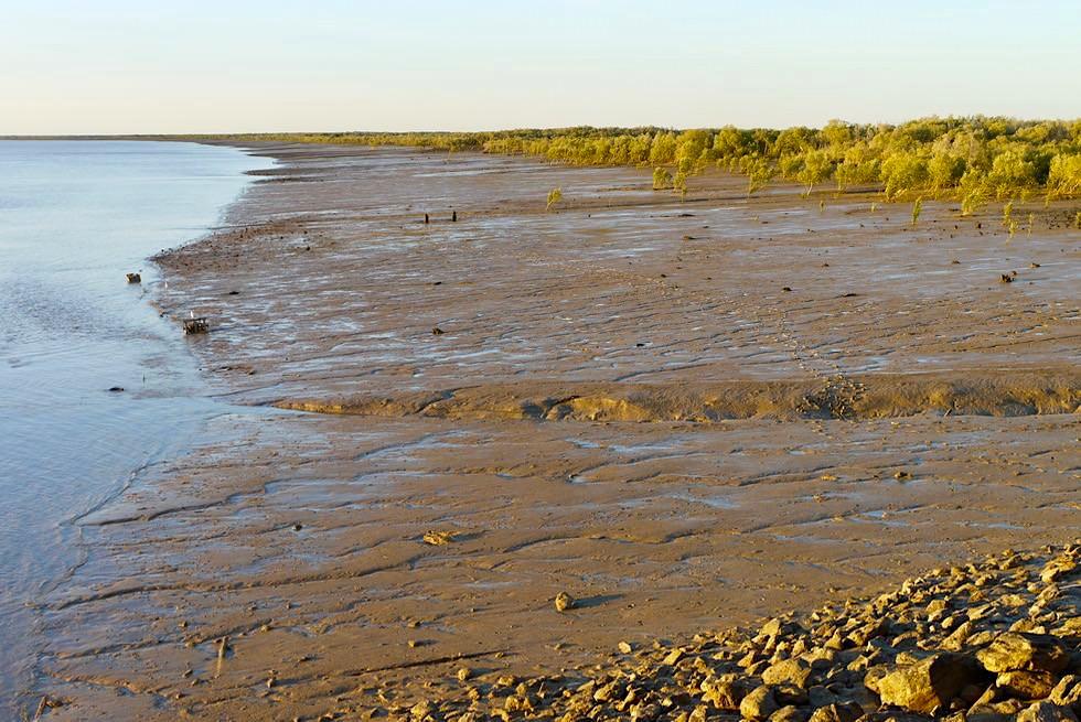 Derby Jetty & Ufer kurz vor dem Sonnenuntergang - King Sound Golf - Kimberley - Western Australia