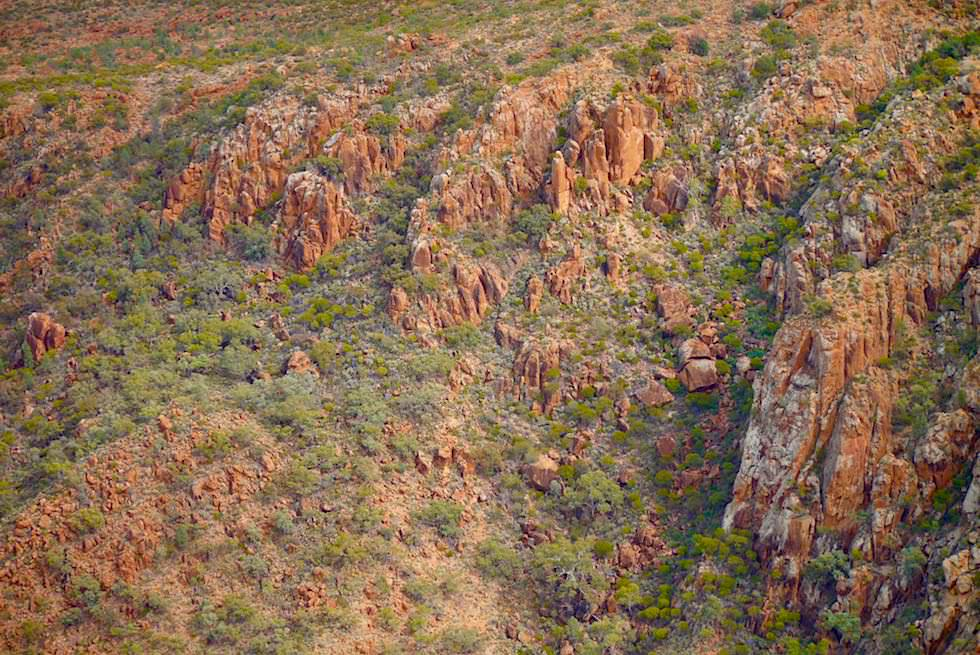 Flinders Ranges - Bizarre Felsformatioen - Arkaroola Wilderness - Outback South Australia