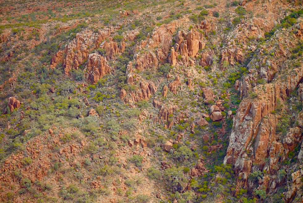 Flinders Ranges - Bizarre Felsformatioen - Arkaroola Wilderness - Outback South Australia