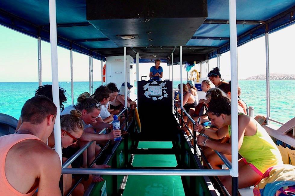 Glasboden Boot - Nhanya Ku - Coral Bay EcoTours - Western Australia