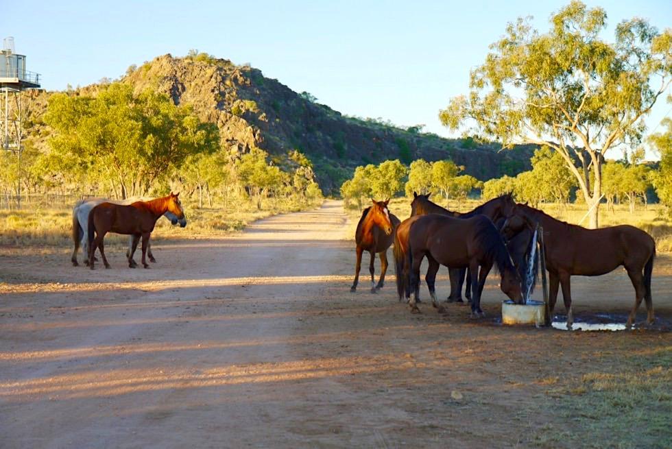 Mimbi Caves & Mimbi Community - Kimberley - Western Australia