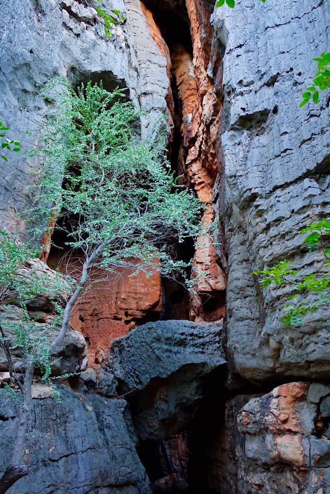 Mimbi Caves - Felsformationen am Eingang - Kimberley - Western Australia