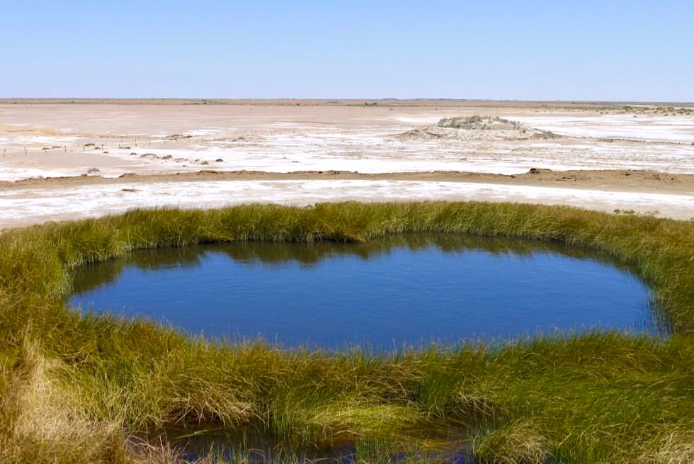 Wabma Kadarbu Mound Springs - Blanche Cup: Grandiose Farben & Ausblick - Oodnadatta Track - South Australia