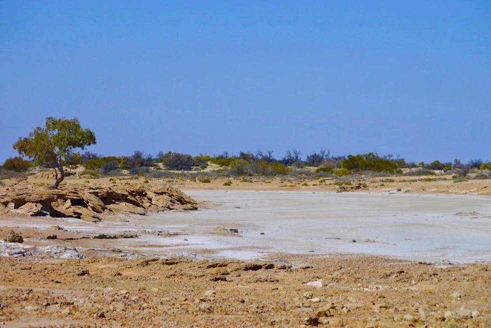 Oadnadatta Track - Mound Springs Anfahrt: Lehm-Salz-Landschaft - South Australia