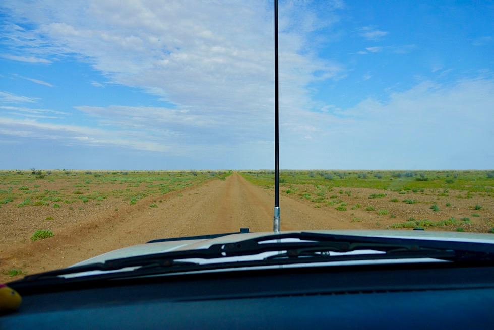 Oodnadatta Track - kerzengerade, gut befahrbare Piste - Outback South Australia