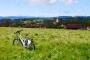 Faszination Radrunde Allgäu – Südwestliche Hälfte: Von Wangen bis zum Grünten