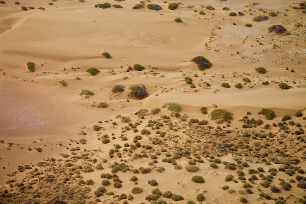 Sanddünenlandschaft am Ufer des Lake Frome - Flinders Ranges Scenic Flight - South Australia