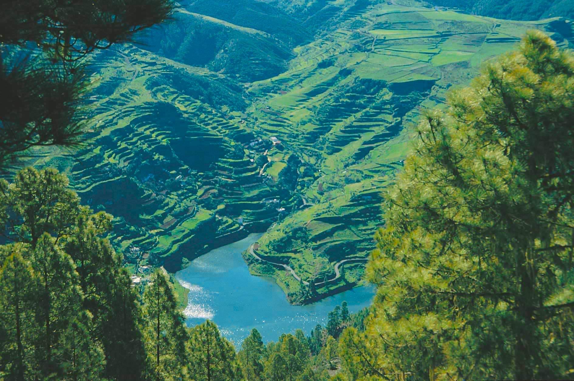 Berg Tamadaba - Faszinierender Ausblick auf den Stausee Presa de Los Perez - Artenara - Gran Canaria