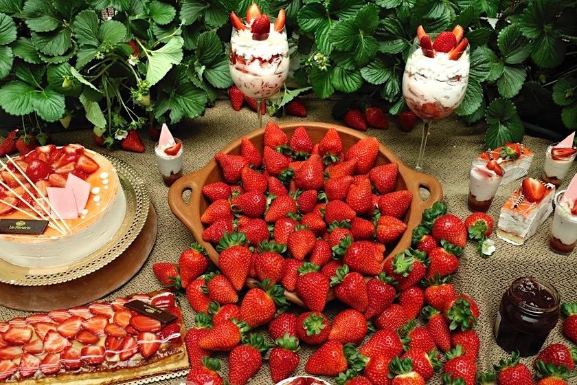 Valsequillo Genusstour - Frische Erdbeeren direkt vom Erzeuger - Gran Canaria