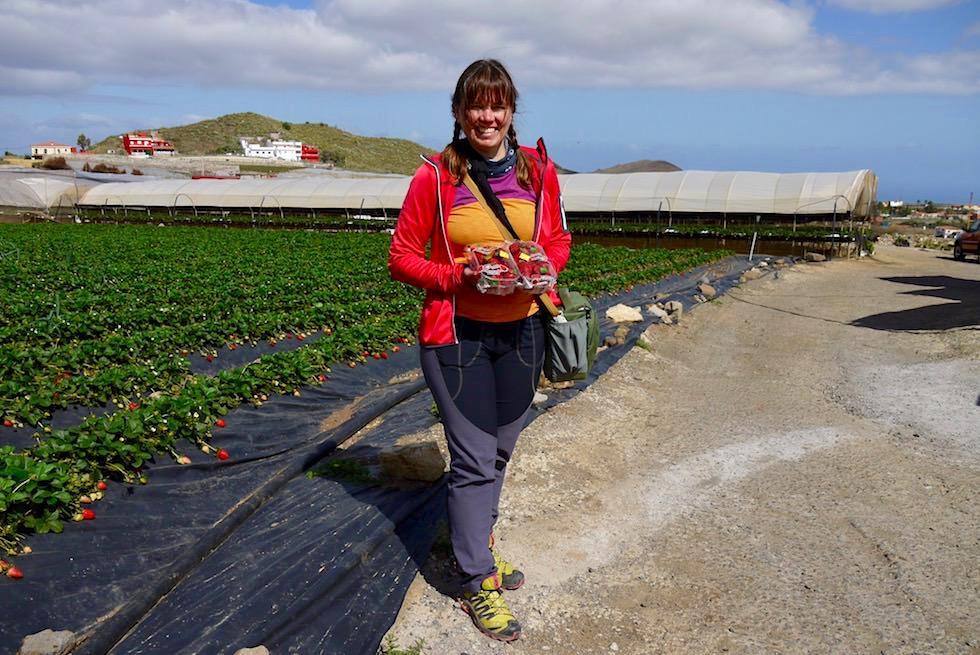 Valsequillo Genusstour - Finca La Palma: Erdbeeren vom Erzeuger - Gran Canaria